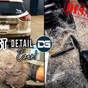 Deep Cleaning The HAIRIEST Vehicle I've Ever Seen! | Insane DISASTER Detail and Pet Hair Removal!