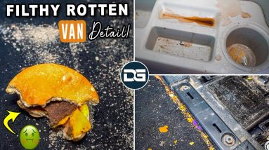 Deep Cleaning a ROTTEN McNASTY Minivan | Insane Car Cleaning Detail and Epic Transformation!