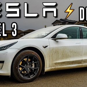 Cleaning a DIRTY Tesla Model 3! | Self-Driving Car Detail!