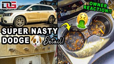 Deep Cleaning a DISASTER Dodge Journey! | Insane Dog Destroyed Cleaning Transformation!