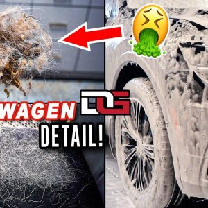 Deep Cleaning a Girl's HAIRY Volkswagen! | Hairiest Car Cleaning | The Detail Geek