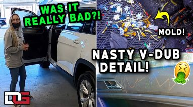 Deep Cleaning a NASTY & MOLDY SUV! | Insane Car Cleaning Transformation! | The Detail Geek