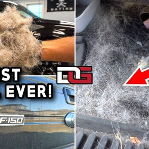 Deep Cleaning The HAIRIEST Truck Ever! | Harley Davidson F-150 Disaster Detail | The Detail Geek